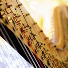 harp-446x446