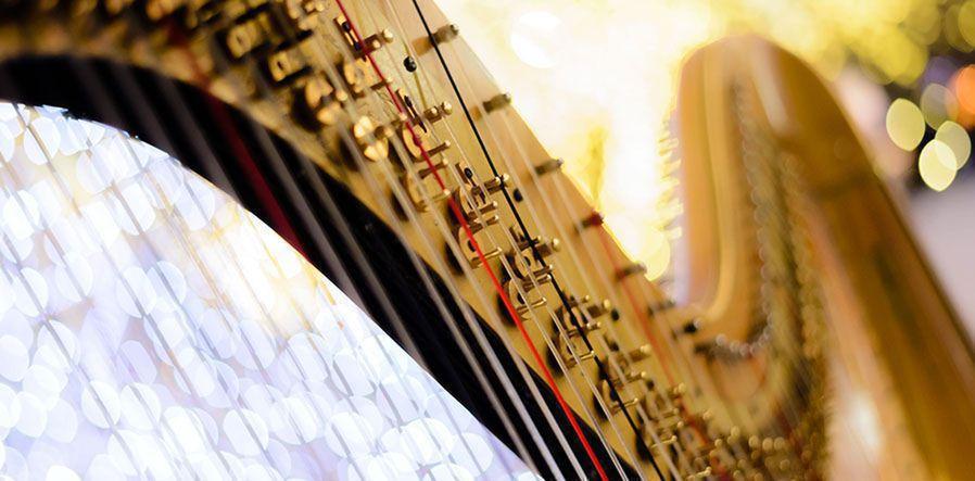 detail harp