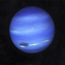 neptunus-vk