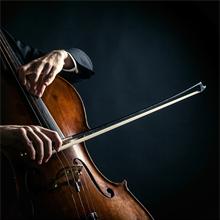 cellosuites 220