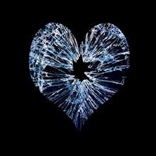 gebroken-hart-220x220