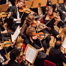 orkest viola 220