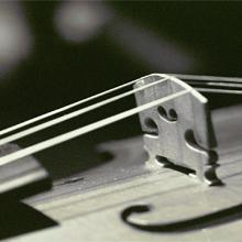 viola 220