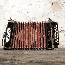accordeon 220