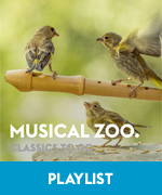 pl musical zoo